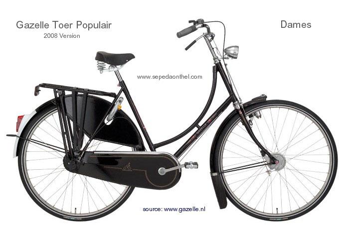 modern gazelle dutch laides bike