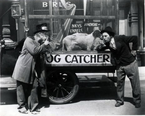 marx brothers horse feathers dog catcher