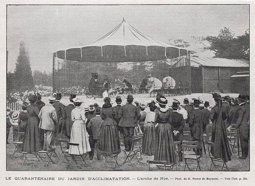 Le Jardin d'Acclimatation 1901 polar bears