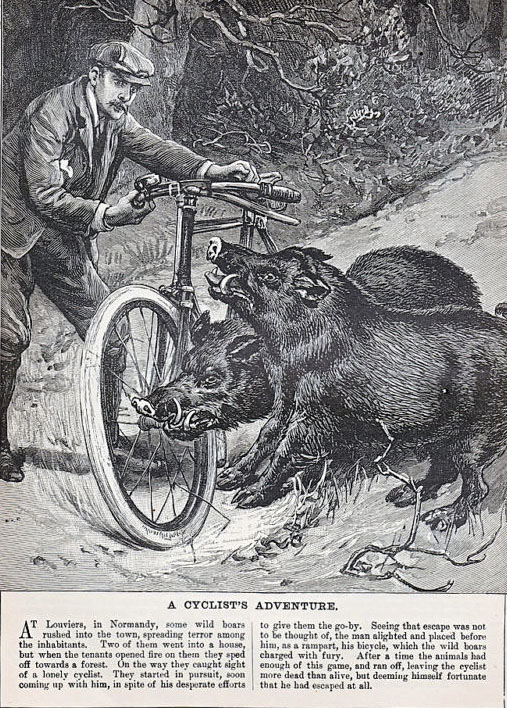 1894_Cyclists_Adventure.jpg