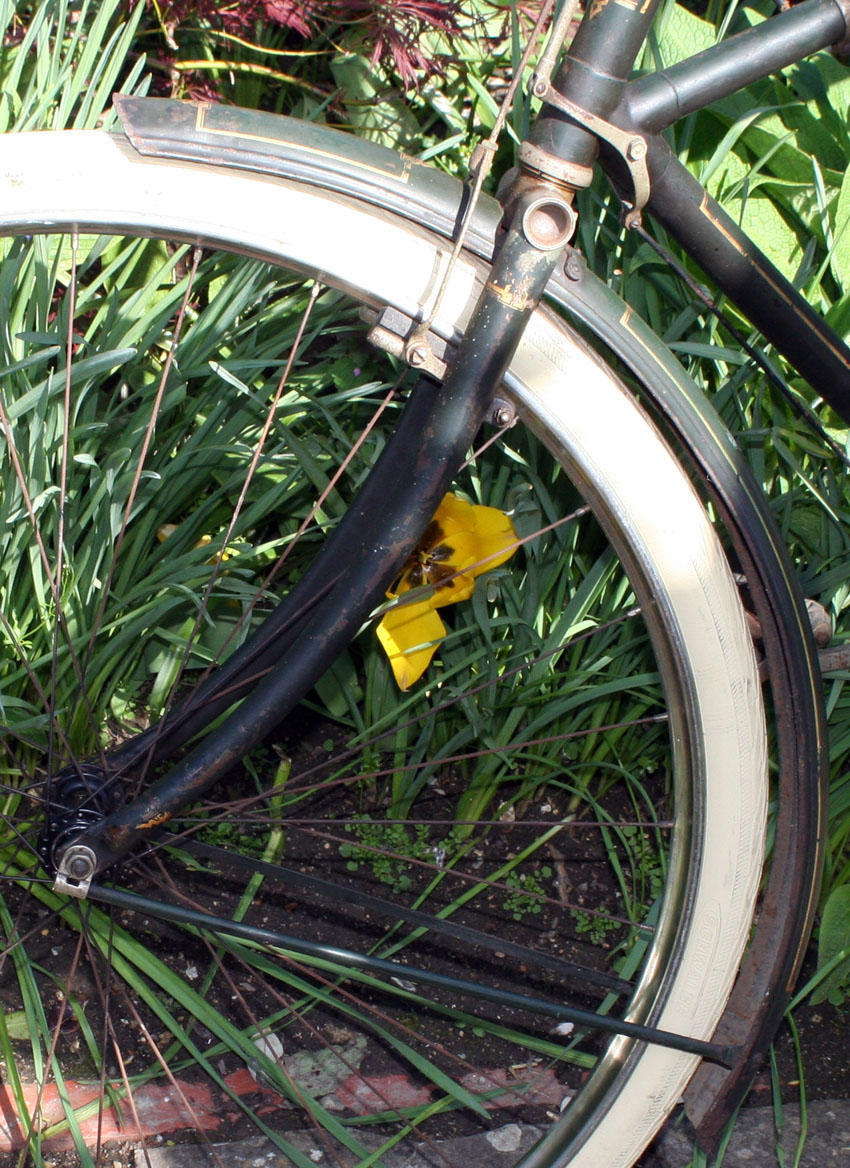 Date Raleigh by serial number