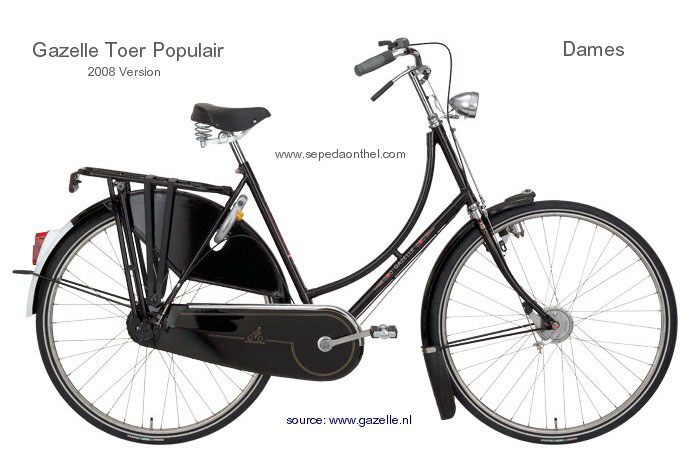 modern gazelle dutch laides bike