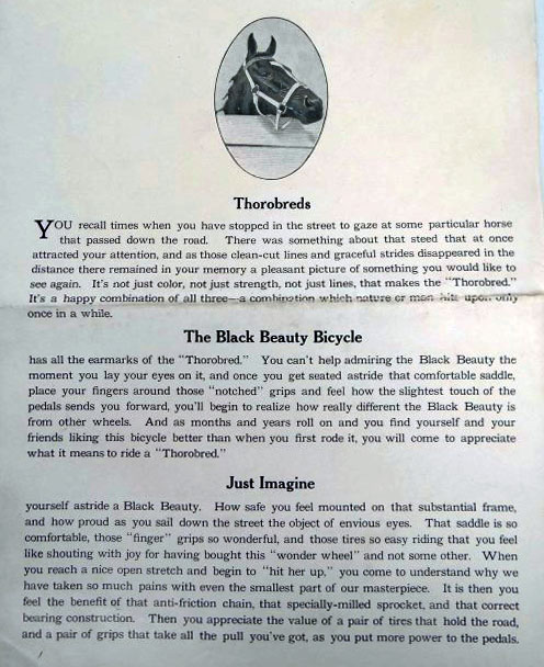 black beauty brochures 2
