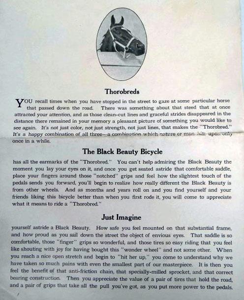 black beauty brochures 2