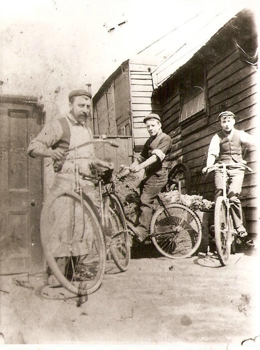 harry-1906