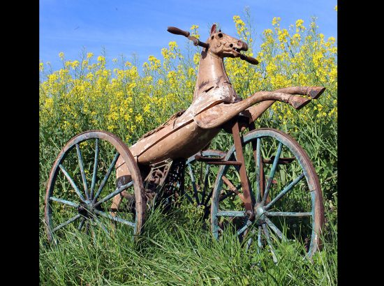 1880s-Juvenile-horse-Tricycle-with-Wooden-Wheels0A05