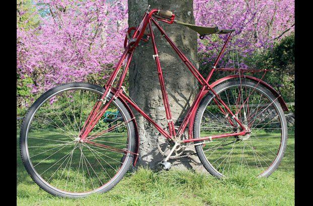 1904 Dursley Pedersen 3 speed 25